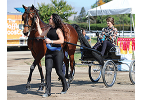 Marrying Passion & Purpose: Tax-Smart Charitable Planning Strategies for Equestrians